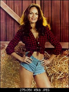 Click image for larger version.  Name:Daisy_Dukes.jpg Views:133 Size:44.5 KB ID:122772